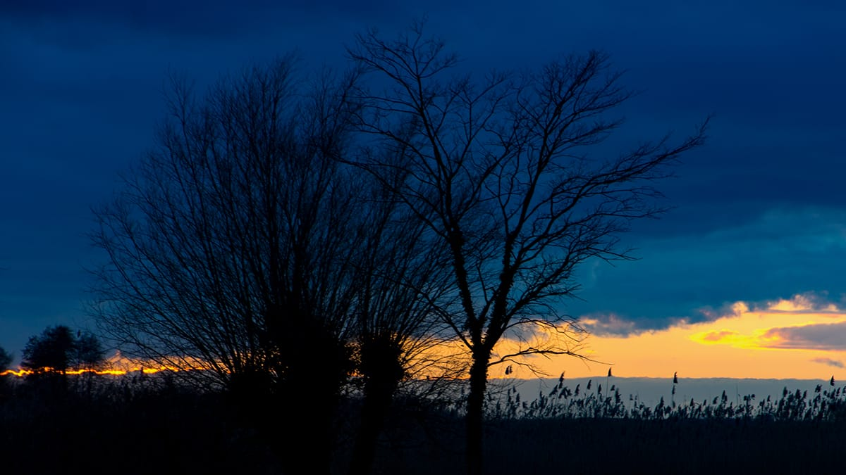 Blaue Stunde Bodstedt