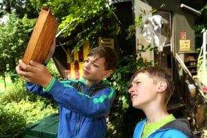 Zooschule Rostock erklärt, wie Natur tickt