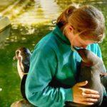 Tierpfleger mit Humboldtpinguin im Zoo Rostock
