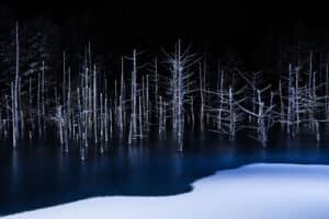 Hiroshi Tanita Open Nature